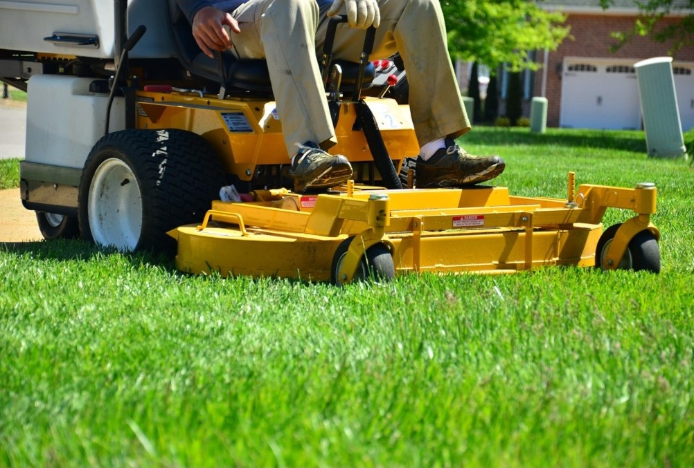 Chemicals to avoid in your lawn care routine | Peterson Anthony